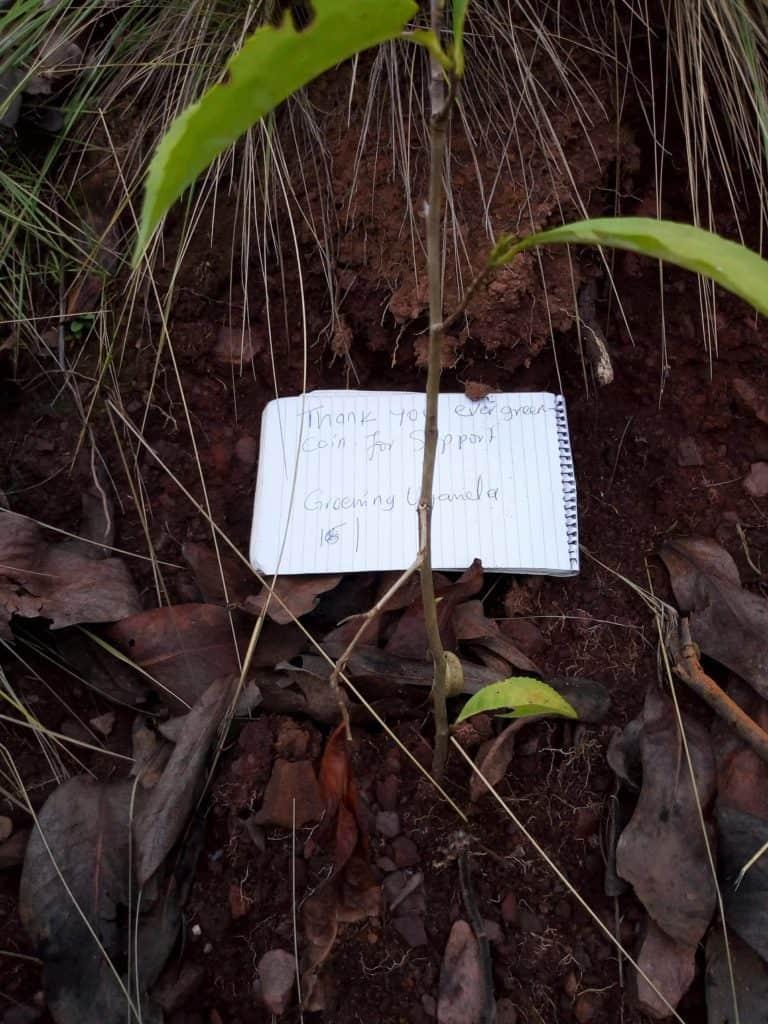 Greening Uganda with EverGreenCoin