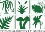 The Botanical Society of America