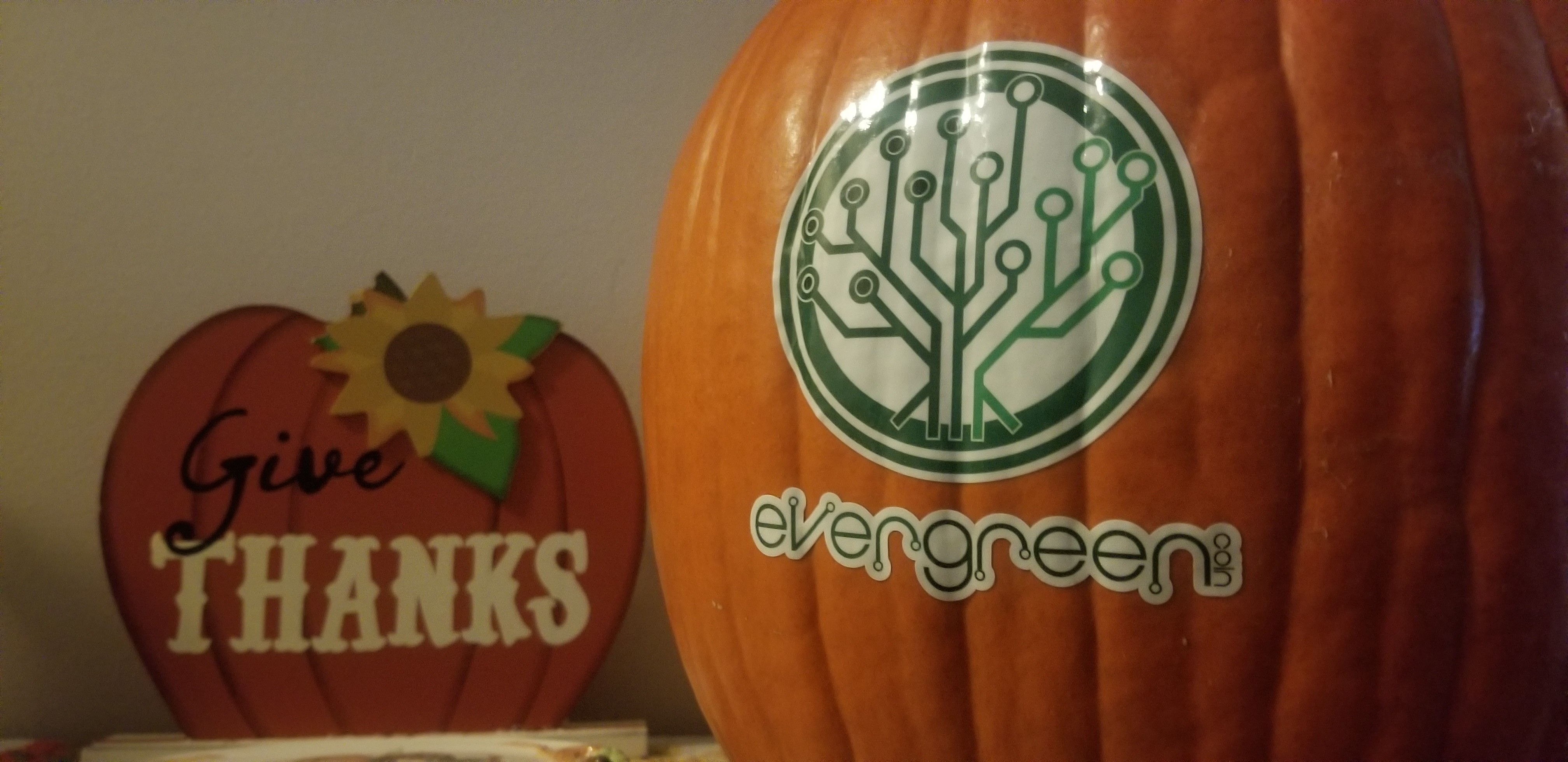 EverGreenCoin Give Thanks